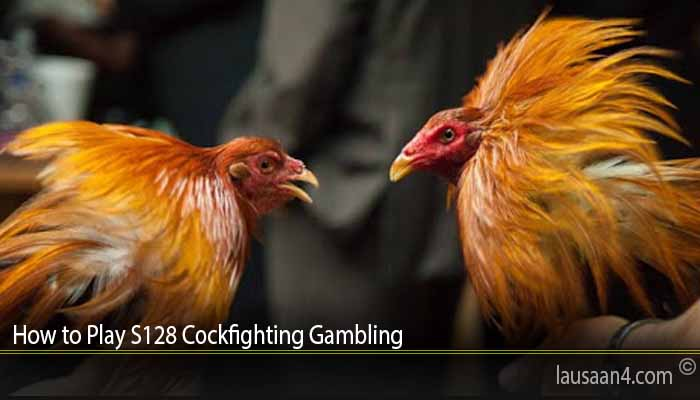 How to Play S128 Cockfighting Gambling
